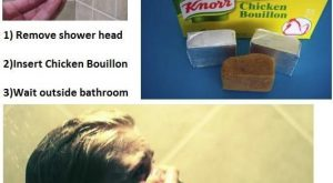 Chicken broth shower for anyone? Pranks funny hilarious prank pics lmfao humor shower prank