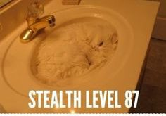 Stealth Level  – D
