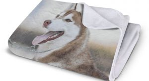 Plush Fleece Blanket