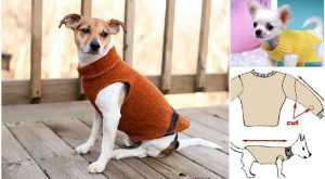 If you've got a few ill-fitting or out-of-style sweaters in your stash, try some…