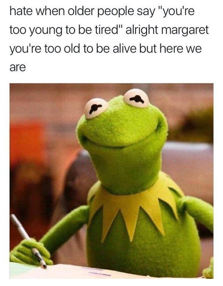 Kermit the frog meme of sassy answer when people say you are too young…