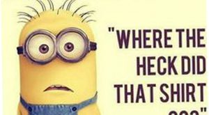 Today  Minion Quotes