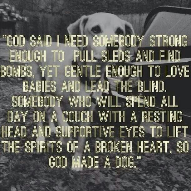 Love my dog so much this quote is perfection