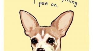 The Hilarious Illustrated Confessions Of Our Pets –    ""