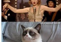 Grumpy Cat! XD grumpy cat meme taylor swift – Google Search
