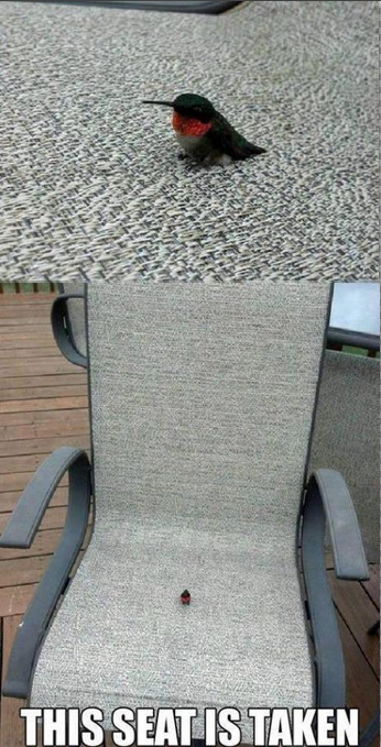 This seat is taken. This made me laugh more than it should. HA ;)