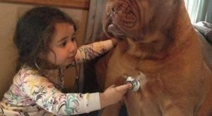 funny caption pictures little girl big dog yes shes annoying but i love her…