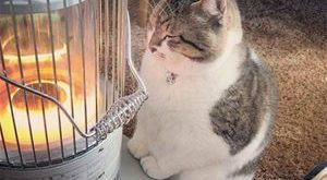 Mmmm This Is So Warm