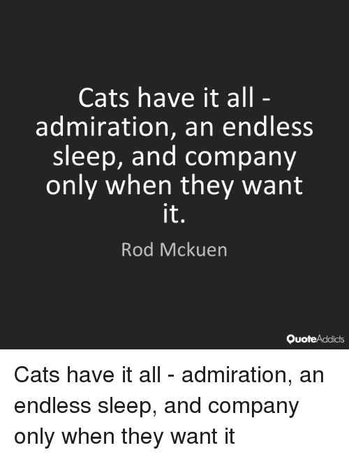 Cats, Memes, and Admiration: Cats have it all  admiration, an endless  sleep, and company  only when they want  it  Rod Mckuen  OuoteAddicts Cats have it all – admiration, an endless sleep, and company only when they want it