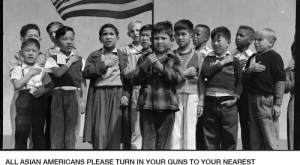 Asian, Guns, and Memes: In  you were seen as full citiznes. In  the Japanese were set free from internment  In  and  you won your civil rights. Since then Asian Americans have had no  reason to distrust the Government or fear for their safety in public. The fight is over!  ALL ASIAN AMERICANS PLEASE TURN IN YOUR GUNS TO YOUR NEAREST  LOCAL LAW ENFORCEMENT IMMEDIATELY  You have nothing to fear, we have your health and safety in our hands  You can trust the government to protect you