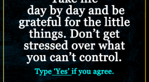 Life, Memes, and Control: Take life  day by day and be  grateful for the little  things. Don't get  stressed over what  you can't control.  Type 'Yes' if you agree.  CREATORI Creatori