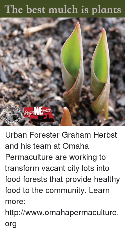 Community, Food, and Memes: The best mulch is plants  GENERA  tate Urban Forester Graham Herbst and his team at Omaha Permaculture are working to transform vacant city lots into food forests that provide healthy food to the community. Learn more: http://www.omahapermaculture.org