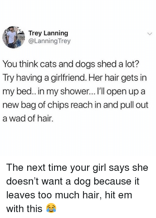 Cats, Dogs, and Hit 'Em: Trey Lanning  @Lanning Trey  You think cats and dogs shed a lot?  Try  having a girlfriend. Her hair gets in  my bed.. in my shower… I'll open up a  new bag of chips reach in and pull out  a wad of hair. The next time your girl says she doesn't want a dog because it leaves too much hair, hit em with this