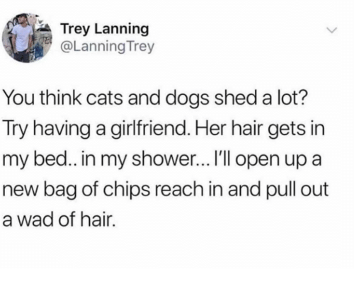Cats, Dogs, and Shower: Trey Lanning  @Lanning Trey  You think cats and dogs shed a lot?  Try having a girlfriend. Her hair gets in  my bed.. in my shower… I'll open up a  new bag of chips reach in and pull out  a wad of hair.