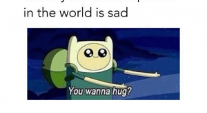 Memes, World, and Sad: When your favorite person  in the world is sad  You wanna hug?