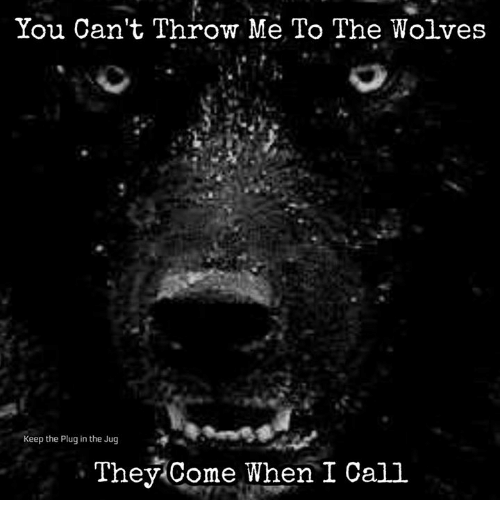 Memes, Wolves, and : You Can't Throw Me To The Wolves  Keep the Plug in the Jug  They Come When I Call