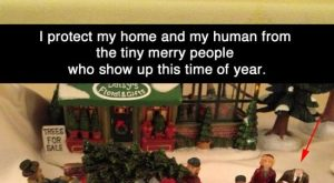 """""""I protect my home and my human from the tiny merry people who show…"""