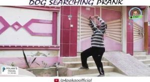 Click to see Video | Dog Searching Prank | By Nadir Ali In |…