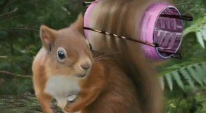 Squirrel Professional Model getting ready for a shoot