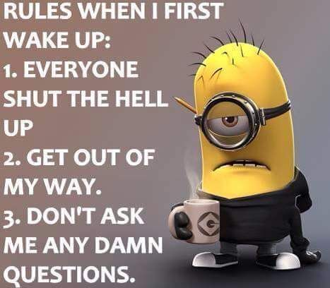 Image result for minion memes fresh and new – Fit for Fun