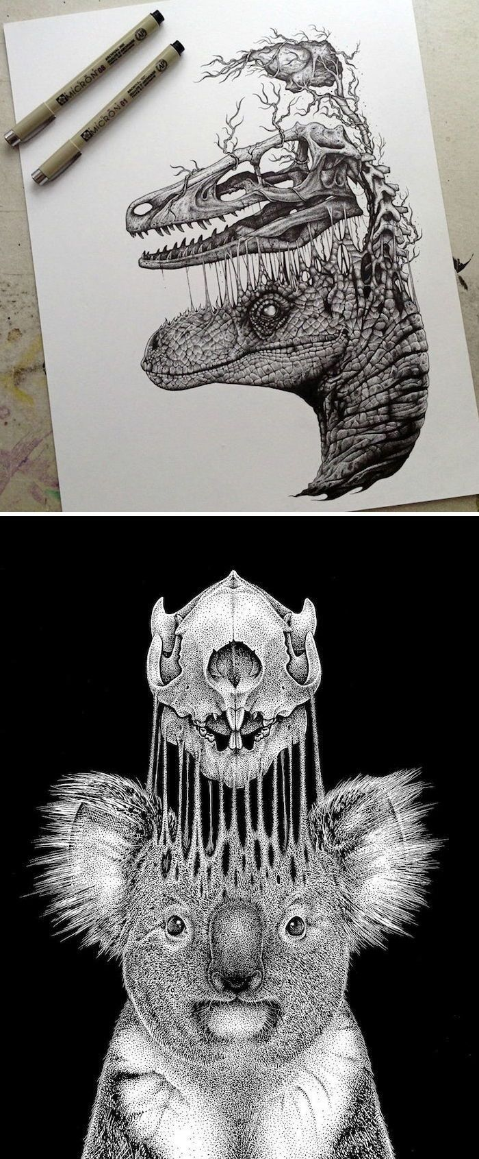 Paul Jackson's edgy illustrations often focus on the anatomy of animals—both dead and alive