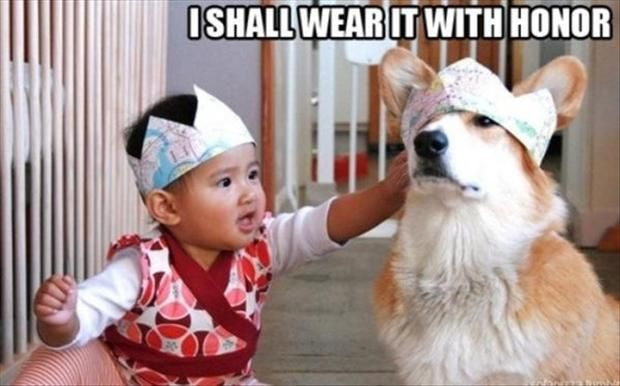 Funny Pictures & #8211; 35 Pics