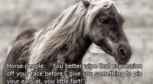 My mare exactly. Lol!
