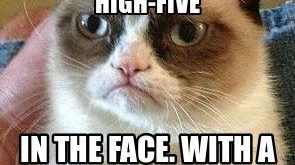 "#GrumpyCat explore Pinterest""> #GrumpyCat #meme explore Pinterest""> #meme For ..."