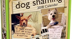 Dog Shaming  Day-to-Day Calendar by Pascale Lemire