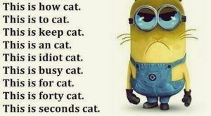 lol. minion u are right for everything here.  Minions Humor Quotes