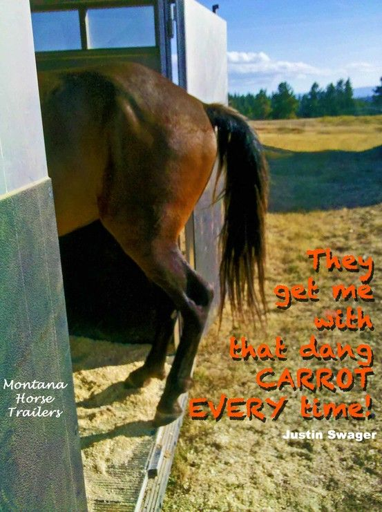 Caption by Justin Swager with Montana Horse Trailers, best value Living Quarters Horse &…