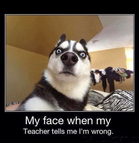 """My face when my Teacher tells me I'm wrong. #funny """" #funny #meme…"""