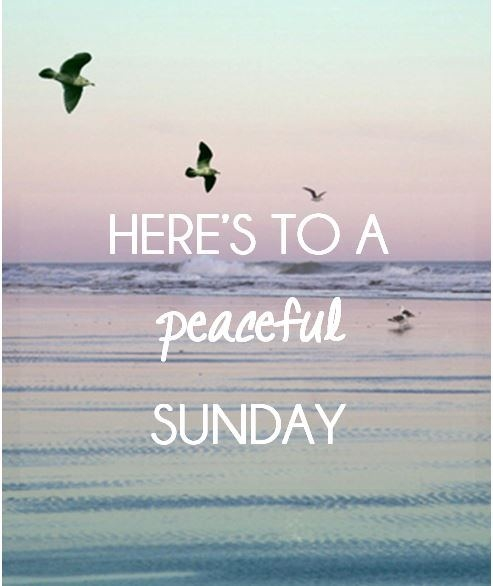 Here's to a peaceful Sunday love day flowers heart friend blessing days of the…