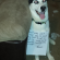 Huskies Who Lead The Pack In Dogshaming