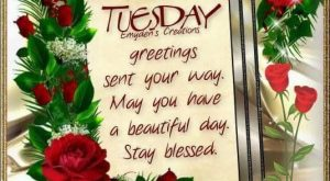 Tuesday greetings. Stay blessed
