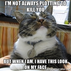 """#catsmemes """" #catsmemes,funny animal pictures, cat memes, just like cat, funniest animals, cat…"""