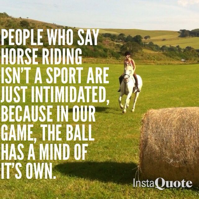 Horse quotes ~ people who say horse riding isn't a sport are just intimidated,…
