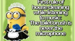 Snappy Minion Quotes