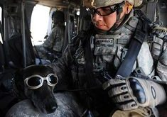 Soldier With Dog In