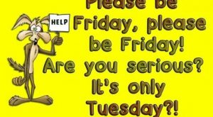 "#Friday search Pinterest""> #Friday, are you serious? It's only #Tuesday search..."