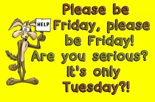 "#Friday search Pinterest"" #Friday, are you serious? It's only #Tuesday search Pinterest"" #Tuesday!! #humor"