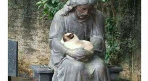 Jesus And His Cat