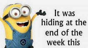 Funny Snappy Minion Quotes