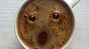 Even You Coffee Is Amazed That You Are Awake This Early Funny Animal Pictures…