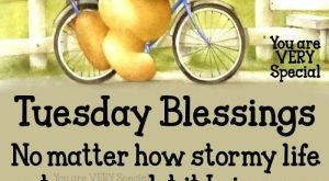 ** Tuesday Blessings