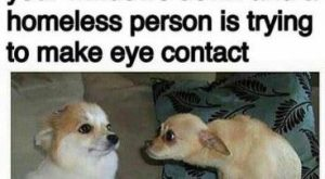 nice Dog Memes That Are Too Freaking Hilarious (46+ Pictures)