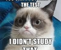 "You can only use what I studied. #GrumpyCat search Pinterest"" #GrumpyCat #Tard search Pinterest""…"