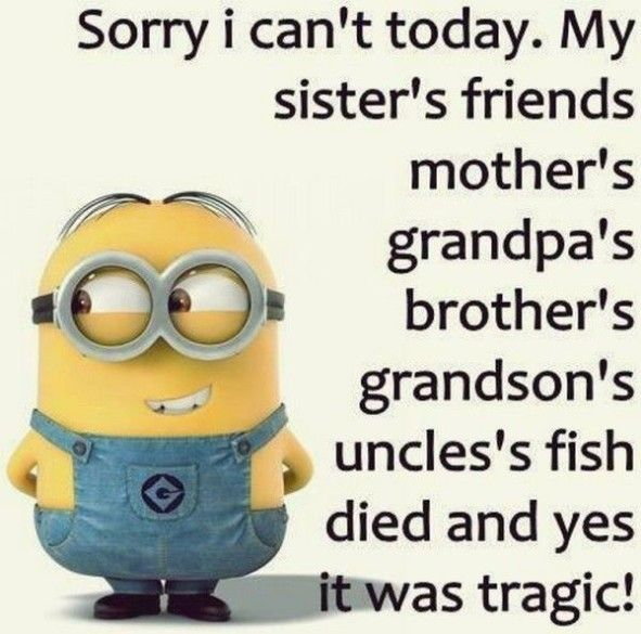 "Top  Funniest minions memes #hilarious "" #hilarious minions"