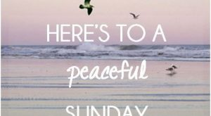 Here's to a peaceful Sunday love day flowers heart friend blessing days of the……