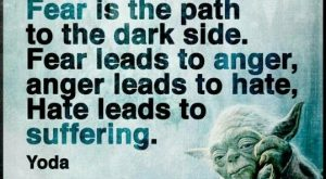 Fear is the path to the dark side. Fear leads to anger. Anger leads…